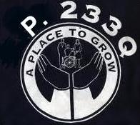 The logo of P233Q